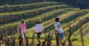 Générations futures dans les vignes de Chateau Canadel
