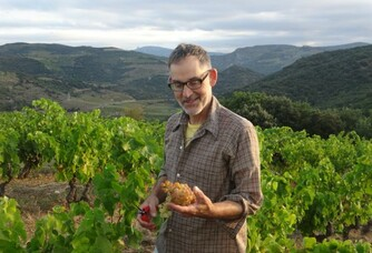 Travail dans la vigne au Vignoble Reveille