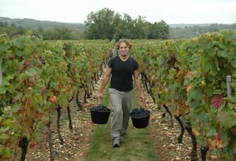 Martial Guiette, vigneron au domaine des Roques de Cana