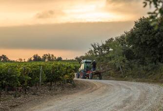 Château Romanin : un vignoble en biodynamie et agronomie