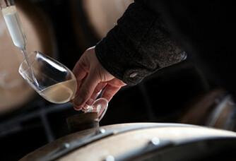 Dégustation au chai du Champagne Soutiran