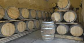 Domaine Des Deux Arcs(Loire) : Visite & Dégustation Vin