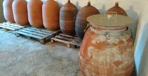 Domaine Grand Guilhem(Languedoc) : Visite & Dégustation Vin