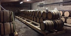 Domaine de Cardon(Bourgogne) : Visite & Dégustation Vin
