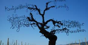 Domaine Gustave Lorentz(Alsace) : Visite & Dégustation Vin