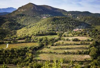 Le magnifique paysage des Aspres