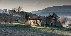 Domaine de la Mongestine(Provence) : Visite & Dégustation Vin