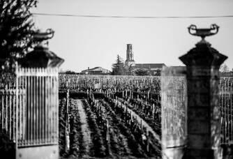 Mes vignes vues par Cordeillan-Bages