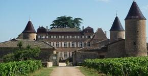 Château de Chasselas(Bourgogne) : Visite & Dégustation Vin