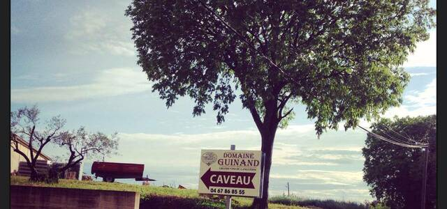Domaine Guinand