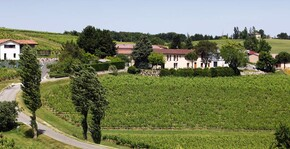 Domaine Vayssette - Le vignoble et la maison