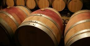Domaine de la Monette(Bourgogne) : Visite & Dégustation Vin