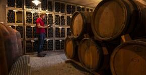 Château de la Selve(Vallée du Rhône) : Visite & Dégustation Vin