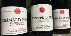Domaine Lejeune(Bourgogne) : Visite & Dégustation Vin