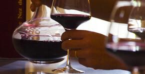 Château Haut de Lerm(Bordeaux) : Visite & Dégustation Vin