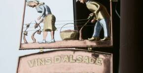 Domaine Jean-Marc Schneider(Alsace) : Visite & Dégustation Vin