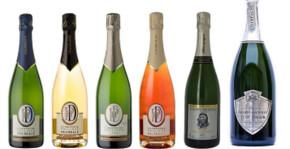 Champagne Philippe Dechelle(Champagne) : Visite & Dégustation Vin