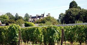 Chateau de Nitray(Loire) : Visite & Dégustation Vin