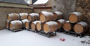 Champagne Vignon Père & Fils (Champagne) : Visite & Dégustation Vin