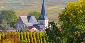 Champagne André Delaunois(Champagne) : Visite & Dégustation Vin