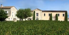 Château Cadet-Bon - Les vignes et le château