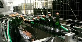 Veuve Ambal(Bourgogne) : Visite & Dégustation Vin