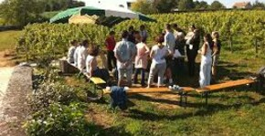 Clos Roussely(Loire) : Visite & Dégustation Vin