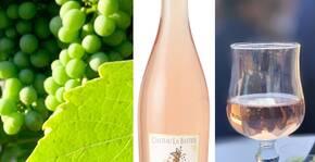 Château la Bastide(Languedoc) : Visite & Dégustation Vin