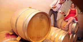 Mas del Riou(Sud-Ouest) : Visite & Dégustation Vin