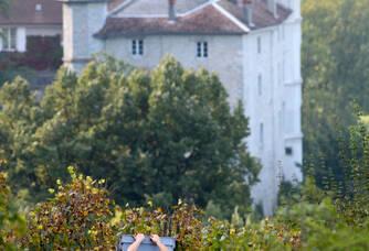 Vendanges dans la parcelle Les Altesses avec vue sur le château