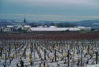 Nos caves vues depuis le Clos Saint-Jean, en hiver