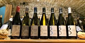 Domaine Celine et Fréderic Gueguen(Bourgogne) : Visite & Dégustation Vin