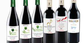 Château Marchand Bellevue(Bordeaux) : Visite & Dégustation Vin