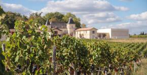 Vignobles Moncets & Chambrun(Bordeaux) : Visite & Dégustation Vin