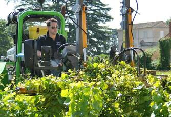 Romaric qui s'occupe des vignes au Domaine Chavy-Chouet