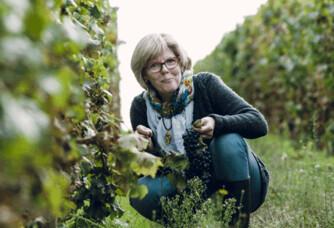 Nathalie Carli dans ses vignes du château de Fontenay