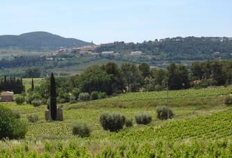 La Cadière, vue du domaine de l'Olivette