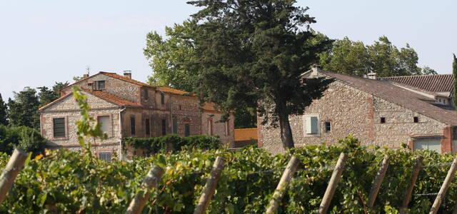 Domaine Lauriga