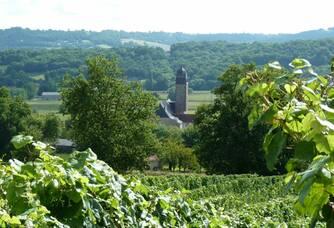 Vue sur le clocher depuis le domaine de la Caillabère