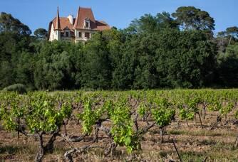 Le Château des Bormettes surplombant le vignoble