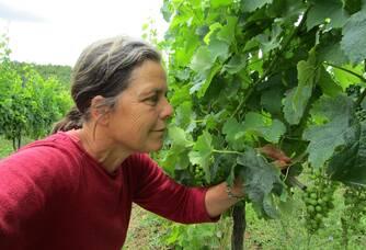 Ulrike du Domaine de Maillac dans ses vignes
