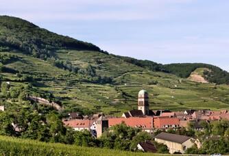 Vue du Schlossberg de Bott-Geyl
