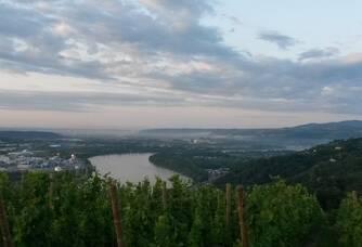 l'horizon au dessus des vignes du Domaine Jeanne Gaillard