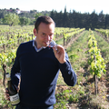 Vignobles Vellas